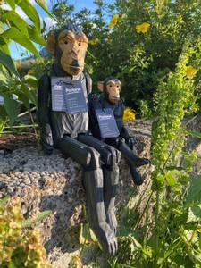 Bilde av Sjimpansjefigur stor -Parlane